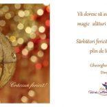 Sarbatori Fericite si un An Nou plin de impliniri!